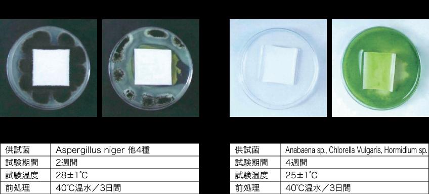 防藻・防カビ性能比較