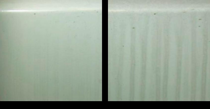 雨筋暴露試験による汚染性能比較